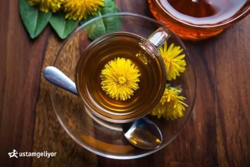 karahindiba çayı ustamgeliyor.jpg